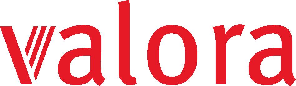 Bsgroup-Data_Analytics-Valora-Logo